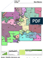 Redistricting Maps Packet