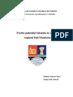 Pozitia Judetului Ialomita in Cadrul Regiunii Sud-Muntenia