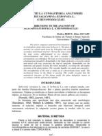 Contributii La Cunoasterea Anat Sp. Salic Europaea