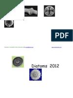 Diatom Calendar 2012