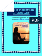 Why is Meditation So Difficult