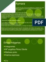 Pueblos Originarios Chile