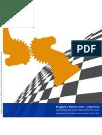 Lineamientos para el Desarrollo Local - Bragado