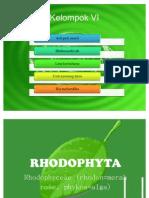 Rhodophytaa Fix