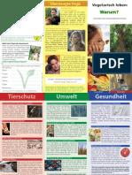 Faltblatt Vegi-Basics 2