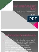 Formacion Profecional Del 2012