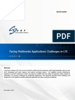 Facing Multimedia Application Challenges in LTE