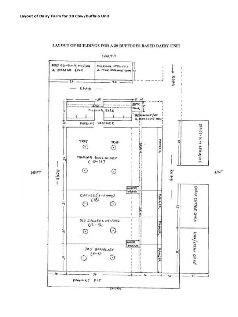 Layout Of Dairy Farm For 20 Cow Dairy Farming Milk