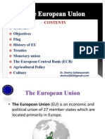 TheEuropean Union (EU)