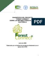 "Diagnostico Proyecto ""FOREST CONNECT"" sobre MIPYMES FORESTALES en Guatemala"