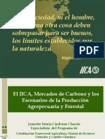 IICA mercados de carbono  por Especialista Jeanette Cárdenas
