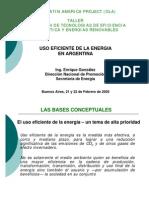 Politica de Energia Sustentable en Argentina - Ing E