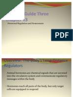 Biology 30 Endocrine System
