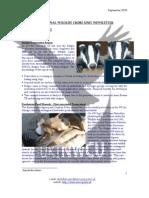 NWCU Newsletter #2 Sept 2008 v2