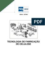 72p(Normalizado) Tecnologia de Fabricação de Celulose