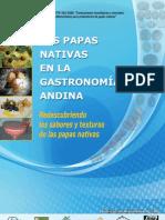 Las papas nativas en la gastronomia andina