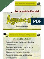 01.Manejo_ Ntricion_ Aguacate