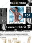 Aula 9 Protocolos Por TC - Coluna Vertebral. Prof Claudio Souza.