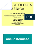 Ancilostomíase
