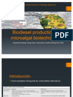 Biodiesel Production by Micro Algal Biotechnology