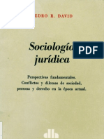 Pedro R. David_Sociología Jurídica