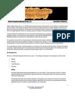 GK Executive Summary 1.2