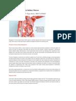 Management of Chronic Kidney Disease