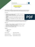 Auditor Interno Camposol