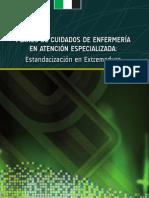 Libro Planes Cuidados Especializada.2