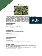 12 plantas medicinales