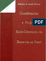 Projeto de Lei - Libertação de Escravos no Brazil
