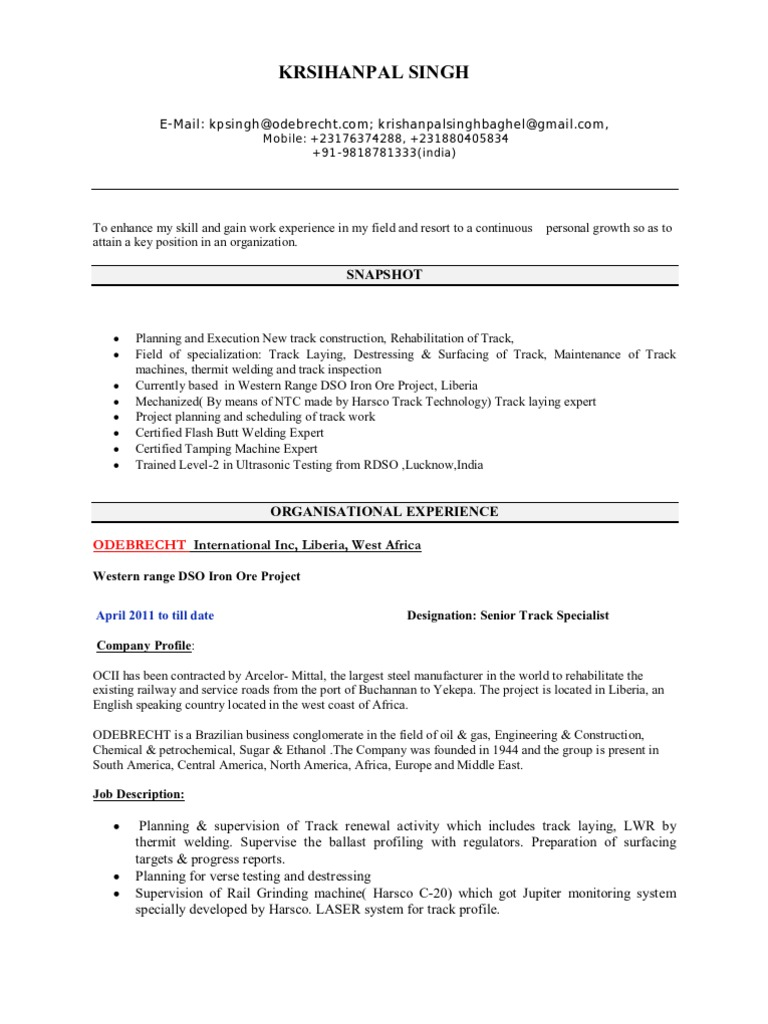 Railway construction professional CV | Track (Rail Transport) | Rail ...