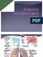 APARATO RESPIRATORIo semiologia (2)