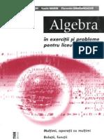 Algebra in exercitii si probleme