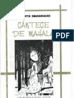 Cantece de mahala, de Florentin Smarandache