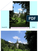 Din Istoria Castelului Peles Sinaia