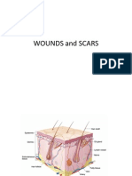 Wounds and Scars