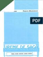 Vreme de saga, de G.Niculescu, F.Smarandache