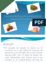 Requerimientos y Disponibilidad de energía en el organismo