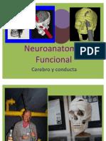 Cerebro y Conducta do