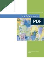 Investigacion Desarrollo Del Adolescente
