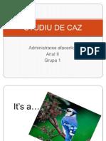 Studiu de Caz Dacia Automobile