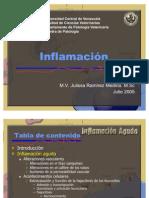 Fisiopatología de la Inflamación Aguda