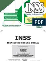 INSS_2010