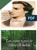 Natura La Eminescu