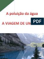 Poluição Da água - A Viagem Do Peixe
