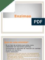 Clase_Enzimas