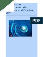 Técnicas de moduclación de impulsos codificados