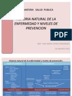 HNE Historia Natural de La Enfermedad
