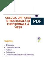 Celula Structura Diviziunea Celulara